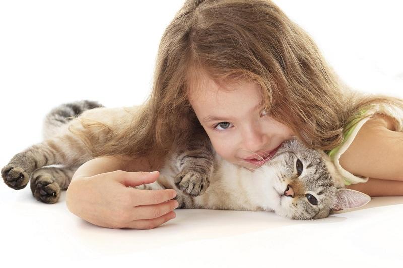 Malattia da graffio di gatto (bartonellosi): sintomi ...